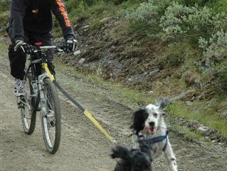 Sykkeltur med Mini og Marco